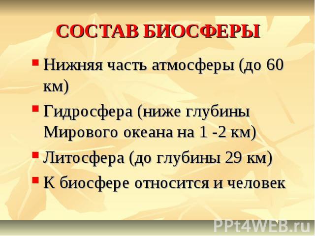 СОСТАВ БИОСФЕРЫ Нижняя часть атмосферы (до 60 км) Гидросфера (ниже глубины Мирового океана на 1 -2 км) Литосфера (до глубины 29 км) К биосфере относится и человек