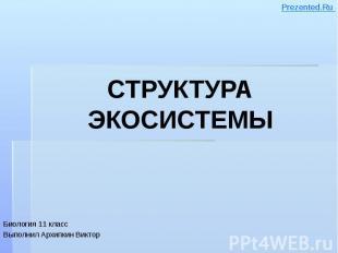 СТРУКТУРА ЭКОСИСТЕМЫ Биология 11 класс Выполнил Архипкин Виктор
