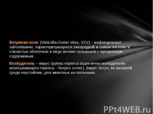 Ветряная оспа (Varicella-Zoster virus, VZV) – инфекционное заболевание, ха