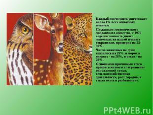 Каждый год человек уничтожает около 1% всех животных планеты. Каждый год человек