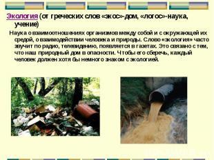 Экология (от греческих слов «экос»-дом, «логос»-наука, учение) Экология (от греч