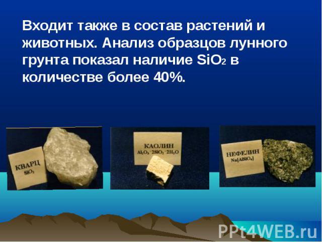 Входит также в состав растений и животных. Анализ образцов лунного грунта показал наличие SiO2 в количестве более 40%. Входит также в состав растений и животных. Анализ образцов лунного грунта показал наличие SiO2 в количестве более 40%.