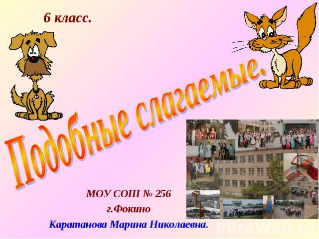 МОУ СОШ № 256 г.Фокино Каратанова Марина Николаевна.
