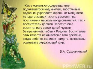 Как у маленького деревца, еле поднявшегося над землей, заботливый садовник укреп