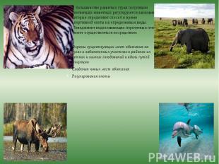 В большинстве развитых стран популяции охотничьих животных регулируются законами
