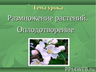 Размножение растений. Размножение растений. Оплодотворение
