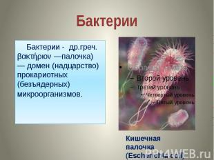 Бактерии Бактерии - др.греч. βακτήριον —палочка) — домен (надцарство) прокариотн