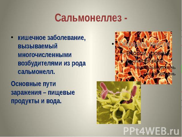 Сальмонеллез - кишечное заболевание, вызываемый многочисленными возбудителями из рода сальмонелл. Основные пути заражения – пищевые продукты и вода.