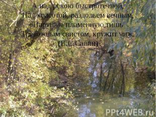 А над рекою быстротечной, Над красотой, раздольем вечным, Нарушив пламенную тишь
