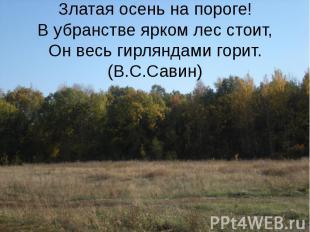 Златая осень на пороге! В убранстве ярком лес стоит, Он весь гирляндами горит.(В