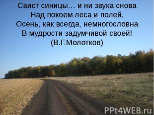 Свист синицы… и ни звука снова Над покоем леса и полей. Осень, как всегда, немно