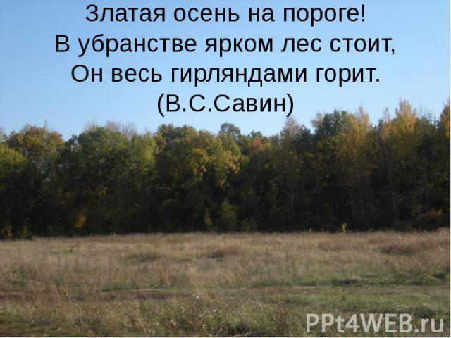 Златая осень на пороге! В убранстве ярком лес стоит, Он весь гирляндами горит.(В.С.Савин)