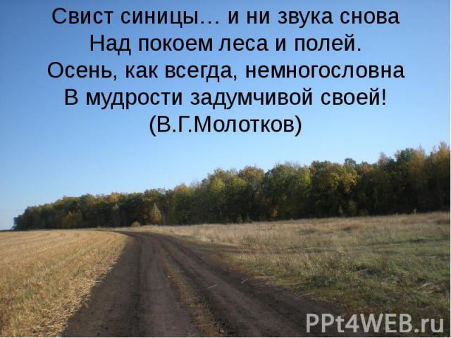 Свист синицы… и ни звука снова Над покоем леса и полей. Осень, как всегда, немногословна В мудрости задумчивой своей!(В.Г.Молотков)