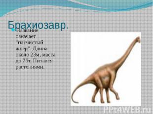 """Брахиозавр. Название означает """"плечистый ящер"""". Длина около 23м, масса"""