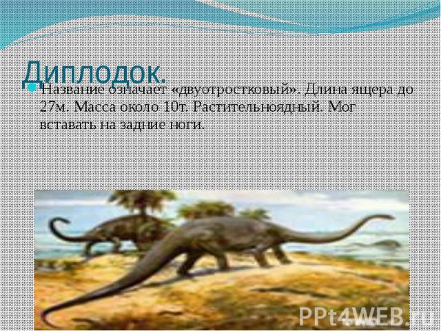 Диплодок. Название означает «двуотростковый». Длина ящера до 27м. Масса около 10т. Растительноядный. Мог вставать на задние ноги.