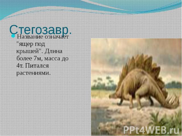 """Стегозавр. Название означает """"ящер под крышей"""". Длина более 7м, масса до 4т. Питался растениями."""