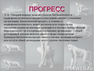 А. Н. Северцов впервые разделил понятия биологического и морфофизиологического п