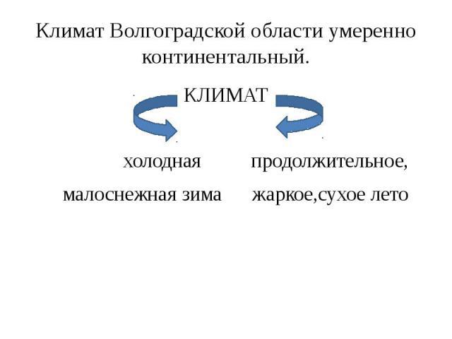 Климат Волгоградской области умеренно континентальный. КЛИМАТ холодная продолжительное, малоснежная зима жаркое,сухое лето