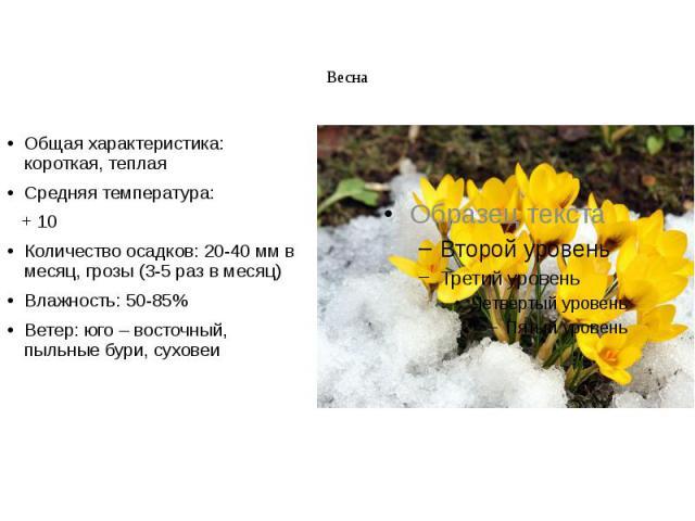 Весна Общая характеристика: короткая, теплая Средняя температура: + 10 Количество осадков: 20-40 мм в месяц, грозы (3-5 раз в месяц) Влажность: 50-85% Ветер: юго – восточный, пыльные бури, суховеи