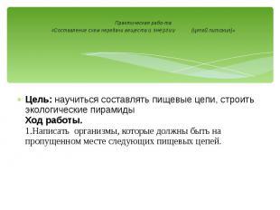 Практическая работа «Составление схем передачи веществ и энергии (цепей пит