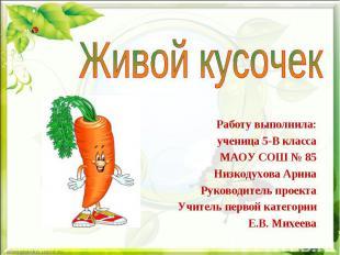 Работу выполнила: ученица 5-В класса МАОУ СОШ № 85 Низкодухова Арина Руководител