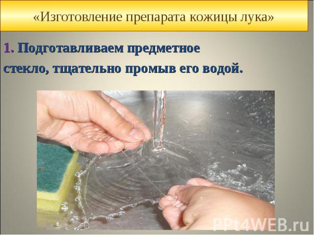 1.Подготавливаем предметное 1.Подготавливаем предметное стекло, тщательно промыв его водой.