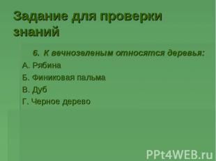 6. К вечнозеленым относятся деревья: 6. К вечнозеленым относятся деревья: А. Ряб