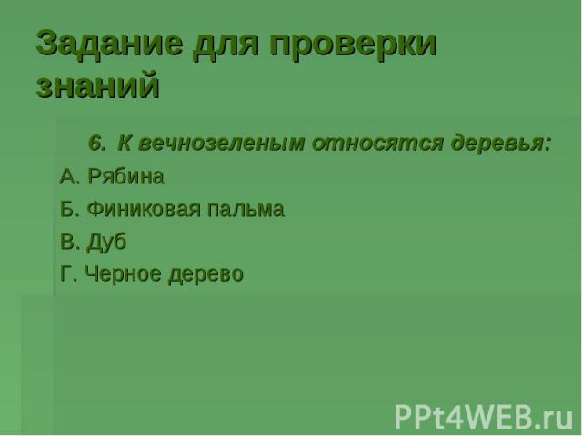 6. К вечнозеленым относятся деревья: 6. К вечнозеленым относятся деревья: А. Рябина Б. Финиковая пальма В. Дуб Г. Черное дерево