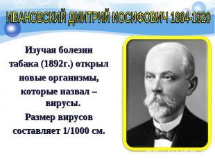 Изучая болезни Изучая болезни табака (1892г.) открыл новые организмы, которые на