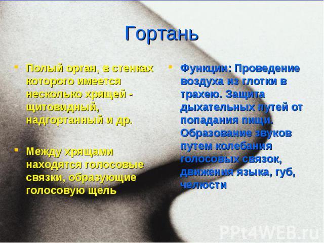 Полый орган, в стенках которого имеется несколько хрящей - щитовидный, надгортанный и др. Полый орган, в стенках которого имеется несколько хрящей - щитовидный, надгортанный и др. Между хрящами находятся голосовые связки, образующие голосовую щель
