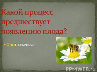 Ответ: опыление Ответ: опыление