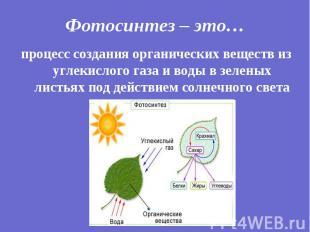 процесс создания органических веществ из углекислого газа и воды в зеленых листь