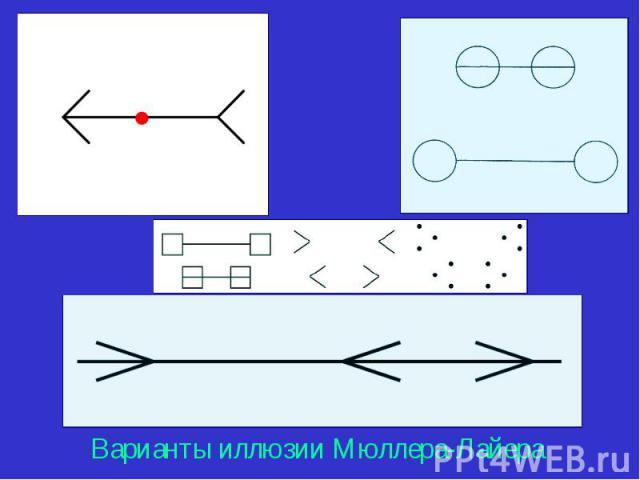 Варианты иллюзии Мюллера-Лайера Варианты иллюзии Мюллера-Лайера