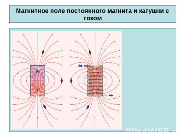 Магнитное поле постоянного магнита и катушки с током