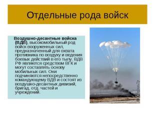 Отдельные рода войск Воздушно-десантные войска (ВДВ), высокомобильный род войск
