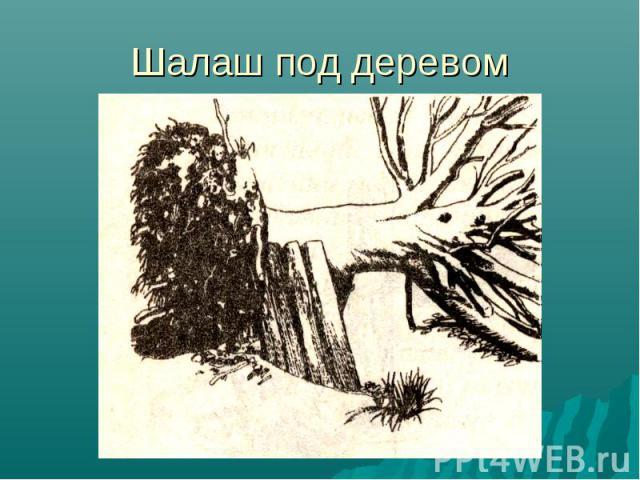 Шалаш под деревом