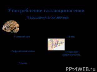 Употребление галлюциногенов