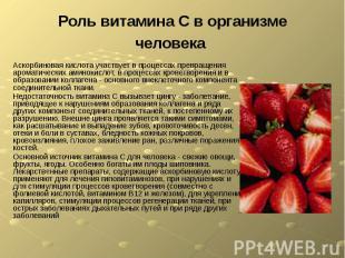 Роль витамина С в организме человека Аскорбиновая кислота участвует в процессах