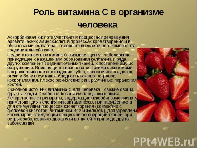 Роль витамина С в организме человека Аскорбиновая кислота участвует в процессах превращения ароматических аминокислот, в процессах кроветворения и в образовании коллагена - основного внеклеточного компонента соединительной ткани. Недостаточность вит…
