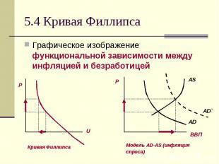 5.4 Кривая Филлипса Графическое изображение функциональной зависимости между инф
