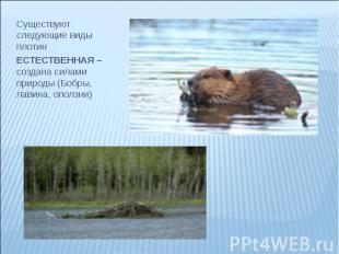 Существуют следующие виды плотин Существуют следующие виды плотин ЕСТЕСТВЕННАЯ –