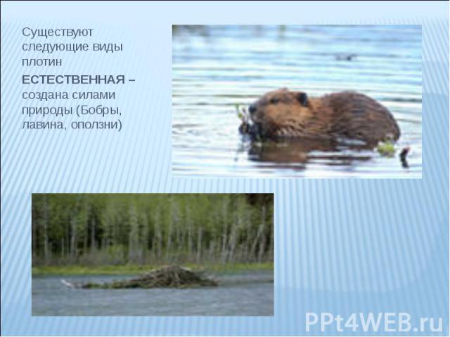 Существуют следующие виды плотин Существуют следующие виды плотин ЕСТЕСТВЕННАЯ – создана силами природы (Бобры, лавина, оползни)