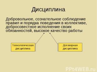 Добровольное, сознательное соблюдение правил и порядка поведения в коллективе, д