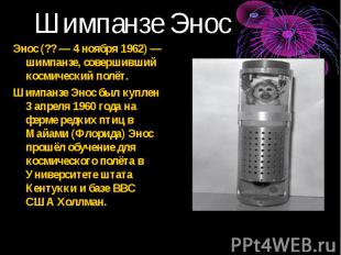 Энос (?? — 4 ноября 1962) — шимпанзе, совершивший космический полёт. Энос (?? —