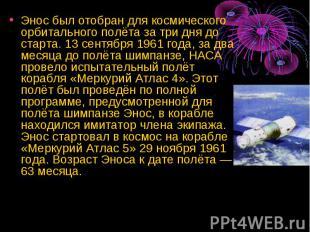 Энос был отобран для космического орбитального полёта за три дня до старта. 13 с