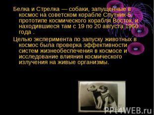 Белка и Стрелка — собаки, запущенные в космос на советском корабле Спутник-5, пр