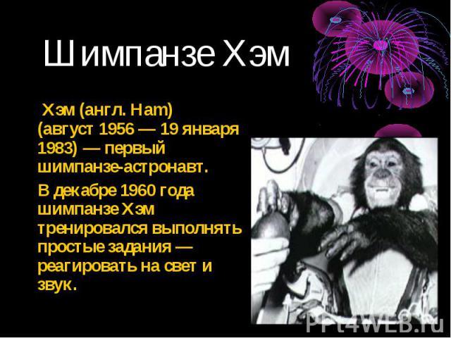Хэм (англ. Ham) (август 1956 — 19 января 1983) — первый шимпанзе-астронавт. Хэм (англ. Ham) (август 1956 — 19 января 1983) — первый шимпанзе-астронавт. В декабре 1960 года шимпанзе Хэм тренировался выполнять простые задания — реагировать на свет и звук.