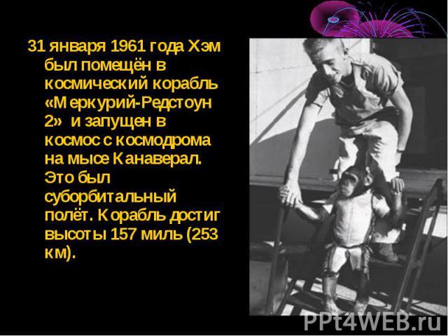 31 января 1961 года Хэм был помещён в космический корабль «Меркурий-Редстоун 2» и запущен в космос с космодрома на мысе Канаверал. Это был суборбитальный полёт. Корабль достиг высоты 157 миль (253 км). 31 января 1961 года Хэм был помещён в космическ…
