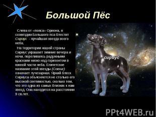 Слева от «пояса» Ориона, в созвездии Большого пса блестит Сириус - ярчайшая звез
