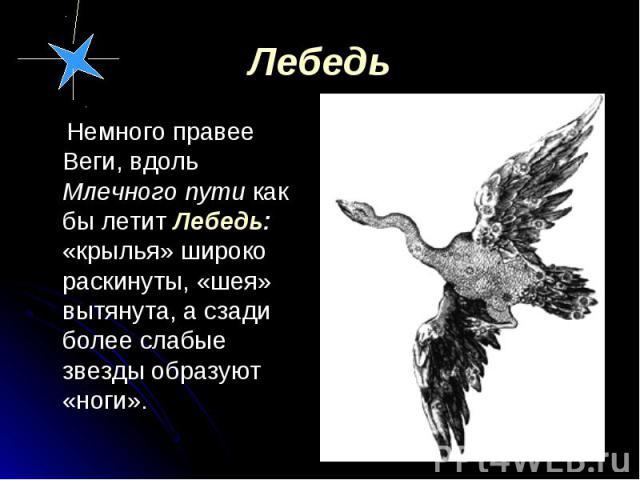 Немного правее Веги, вдоль Млечного пути как бы летит Лебедь: «крылья» широко раскинуты, «шея» вытянута, а сзади более слабые звезды образуют «ноги». Немного правее Веги, вдоль Млечного пути как бы летит Лебедь: «крылья» широко раскинуты, «шея» вытя…